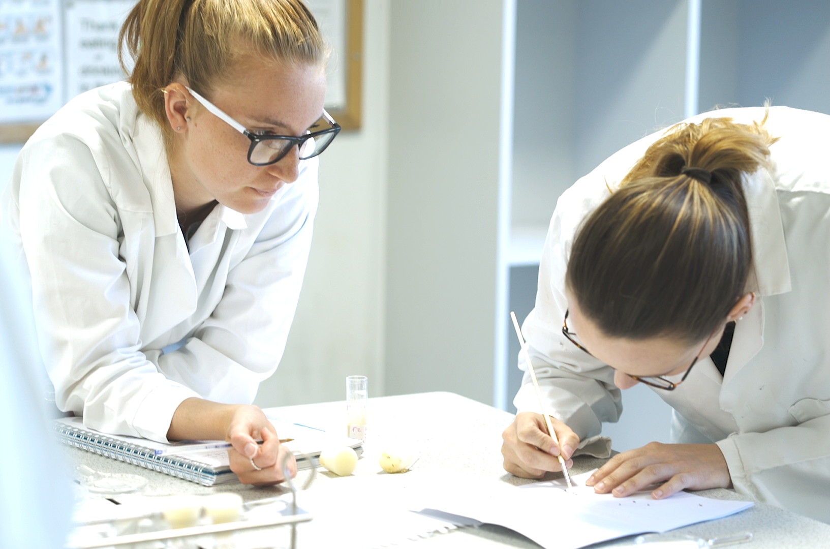 Two students in lab coats stood over desk studying with a paper coloured desk.