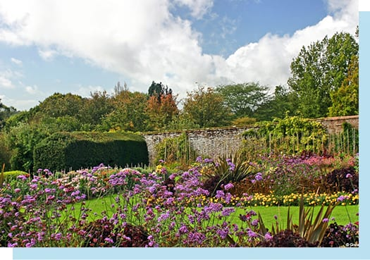 Photo of our Walled Garden