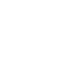 Kingston Maurward